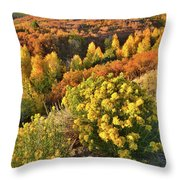 Early Morning At Dallas Divide Throw Pillow