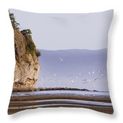 Early Morning Beach Throw Pillow
