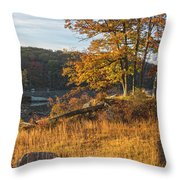 Early Morning Blaze Throw Pillow