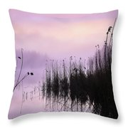 Early Morning By The Pond  Throw Pillow