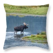 Early Morning Crossing In Grand Teton Throw Pillow