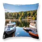 Early Morning Cruises To Doubtfull Sound Throw Pillow