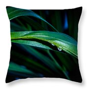 Early Morning Dew Throw Pillow