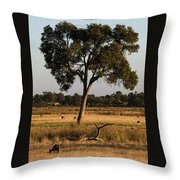 Early Morning Feed Throw Pillow