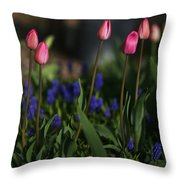 Early Morning Garden Throw Pillow