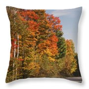 Early Morning In Door County Throw Pillow by Sandra Bronstein
