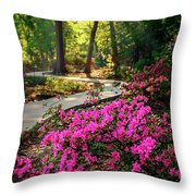 Early Morning In Honor Heights Park Throw Pillow