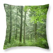 Early Morning In Swiss Forest Throw Pillow