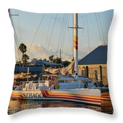 Early Morning In The Harbor Throw Pillow