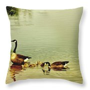Early Morning Lessons Throw Pillow
