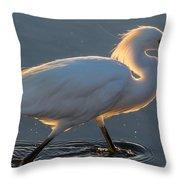 Early Morning Light On Egret Throw Pillow