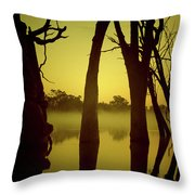 Early Morning Mist At The River Throw Pillow