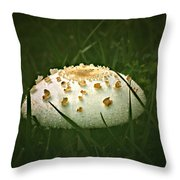 Early Morning Mushroom Throw Pillow