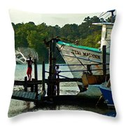 Early Morning Net Toss Throw Pillow