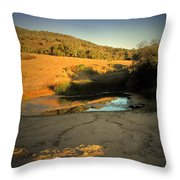 Early Morning Pond Throw Pillow
