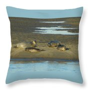 Early Morning Relaxation Throw Pillow