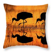 Early Morning Sandhill Cranes Throw Pillow