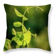 Early Morning Stretch Throw Pillow