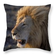 Early Morning Warning Throw Pillow