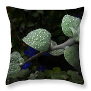 Early Morning Water Droplets Throw Pillow