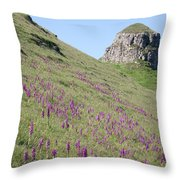 Early Purple Orchids In The Derbyshire Dales Throw Pillow