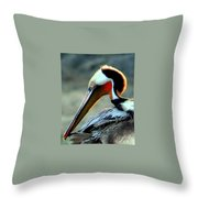 Early Riser Photograph Throw Pillow