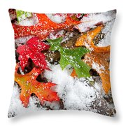 Early Snow During Autumn  Throw Pillow