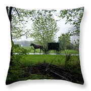 Early Spring Buggy Throw Pillow