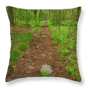 Early Spring In Maryland Throw Pillow