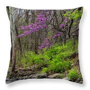 Early Spring On Mill Creek 2 Throw Pillow