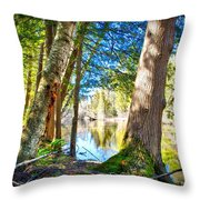 Early Spring On The River Throw Pillow