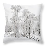 Early Spring Snow Throw Pillow