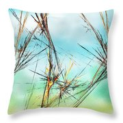Early Spring Twigs Throw Pillow