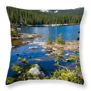 Early Summer At Finch Lake Throw Pillow