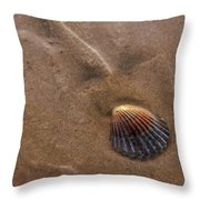 Early Sunshine Throw Pillow