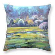 Early Wet Spring Throw Pillow