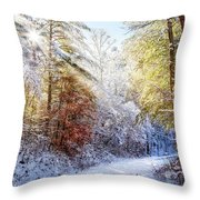 Early Winter's Walk Throw Pillow