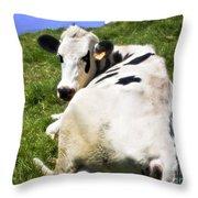 Earmarked Throw Pillow