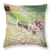 Earth Art 9492 Throw Pillow