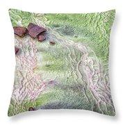 Earth Art 9493 Throw Pillow