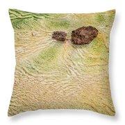Earth Art 9498 Throw Pillow