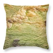 Earth Art 9509 Throw Pillow