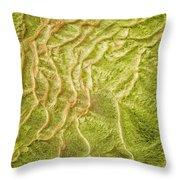Earth Art 9511 Throw Pillow