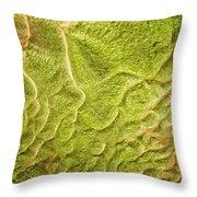 Earth Art 9516 Throw Pillow