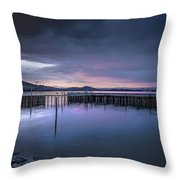 Earth Day Sunset Unsigned Throw Pillow