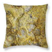 Earth Portrait 013 Throw Pillow