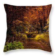 Earth Tones In A Illinois Woods Throw Pillow