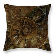 Earth Treasures - Brown Amonite Throw Pillow