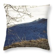 Earth Water And Ice Throw Pillow