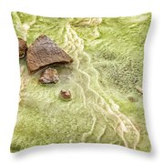 Earthart 9512 Throw Pillow